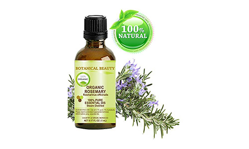 Organic ROSEMARY Oil (Therapeutic Grade) By Botanical Beauty