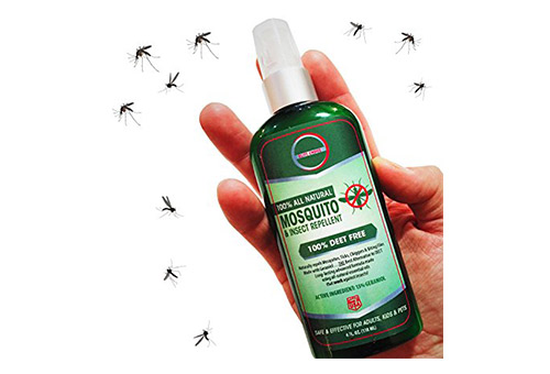 Travel insect repellant bug spray.