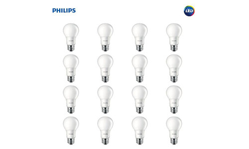 LED Non-Dimmable A19 Frosted Light Bulb