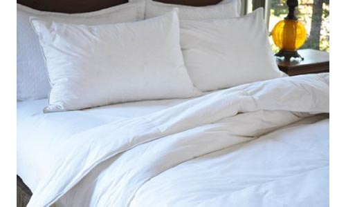 Natural Comfort Classic White Goose Down Feather Comforter, Twin