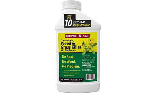 Ragan & Massey Glyphosate Concentrate Grass and Weed Killer, 16 oz