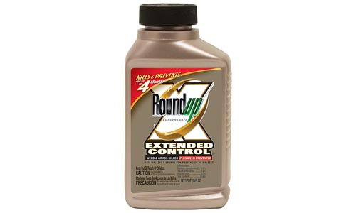 Roundup Extended Control Weed and Grass Killer Plus Weed Preventer II Concentrate, 16-Ounce